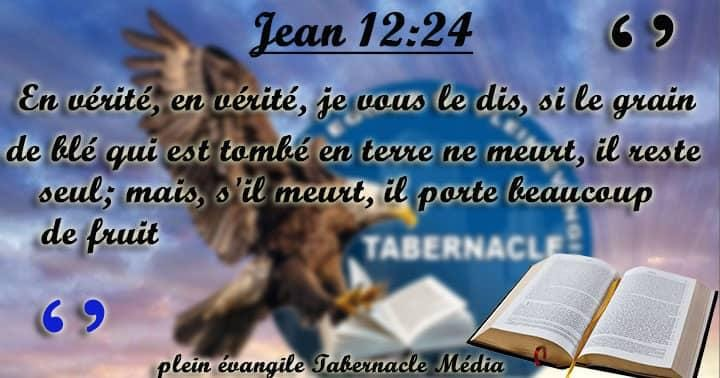 Instant Bible et Citations